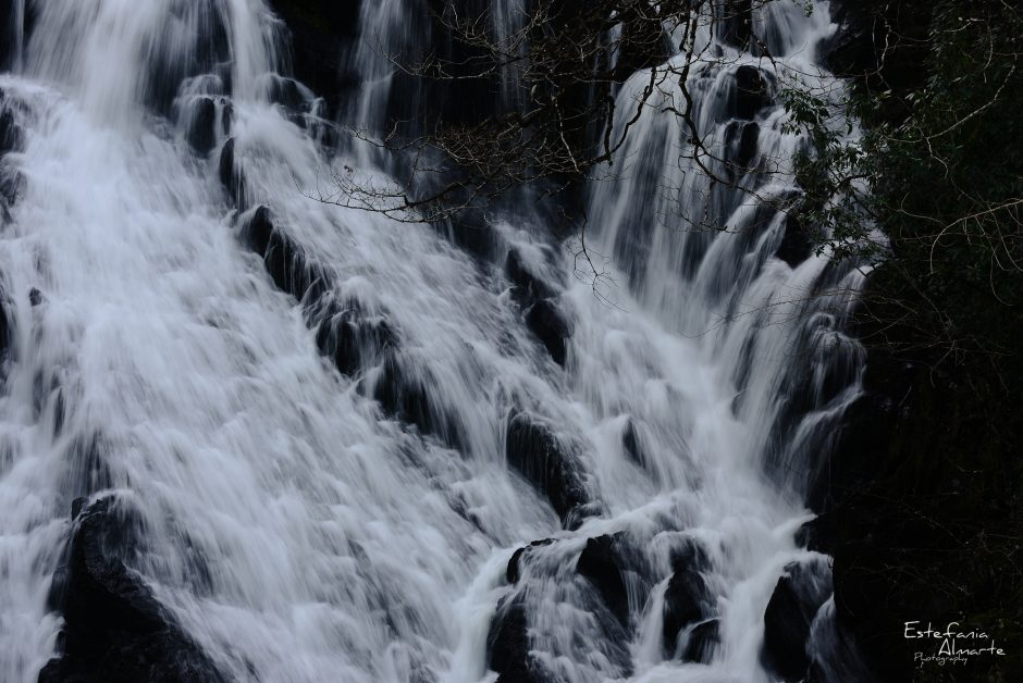 waterfall, cascada, agua, water, falling, branch, rock, roca